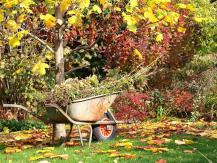Nous éteignons les équipements de jardin: des conseils utiles pour préparer l'hiver